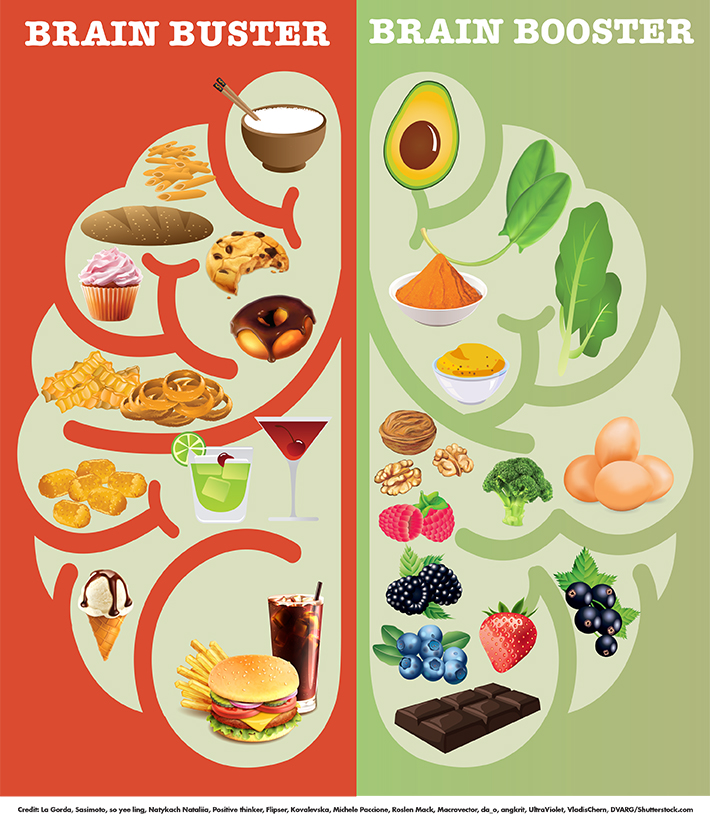 diet affects your brain